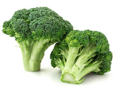 Broccoli Vegetable suppliers
