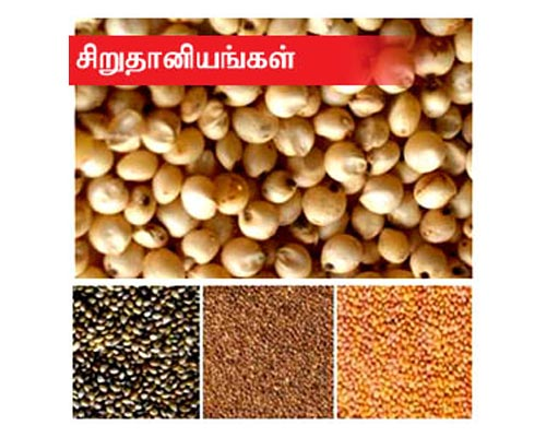 Grocery Dal buy online theni