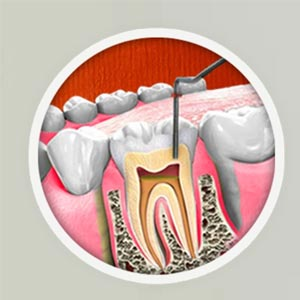 Multi-Specialist-Dentist-Theni