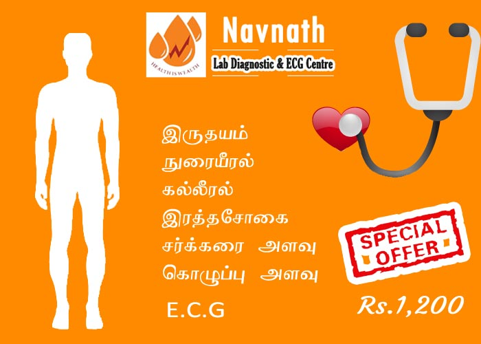 Full Body Checkup Offer
