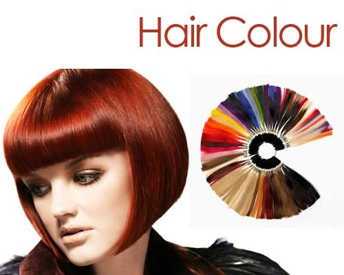 Hair Care Specialist Madurai
