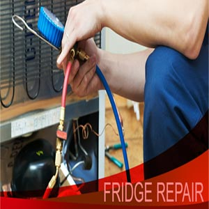 All brand Fridge service Cumbum