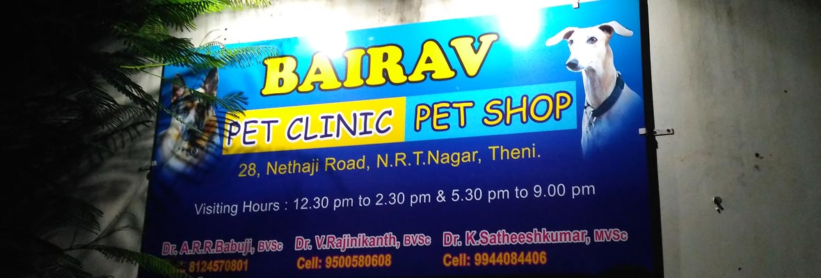 Best pet care theni