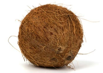 Whole Brown Coconuts Merchant