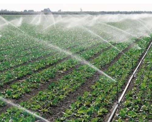 Theni Agricultural Cylinder Drip Irrigation System Chinnamanur