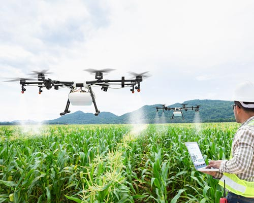 agriculture-industry-job-service-dubai-palani