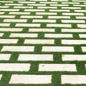 Grass-driveways-pavers-suppliers-cumbum
