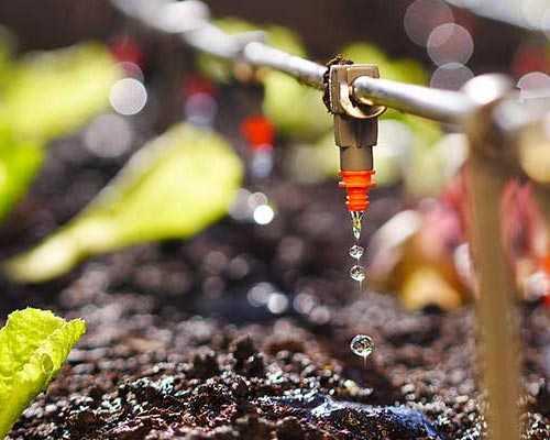 Madurai-Drip-Irrigation-Installation-Theni