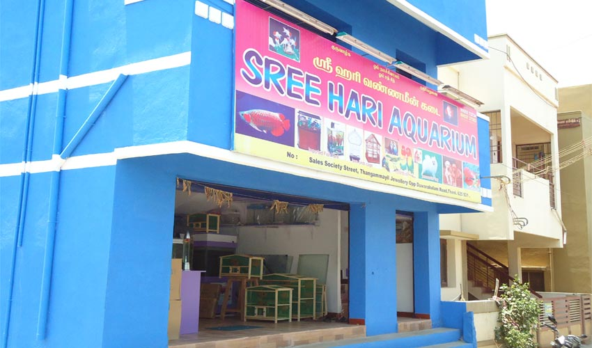 office aquarium maker in theni cumbum