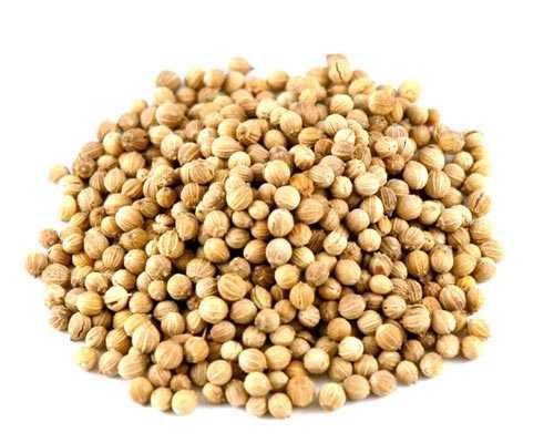 Kumily Coriander Seeds  Savory Spice wholesaler Theni Virudhunagar