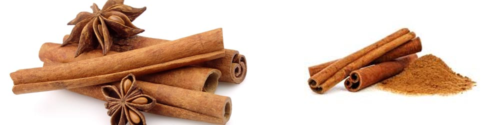 Cinnamon Spices Wholesaler