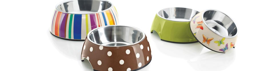 where to buy Pet accessories theni