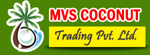 Coconut Wholesale Merchant Tender Coconut Suppliers