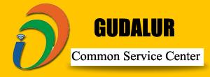 Online Service Provider Gudalur