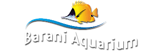 Theni Fish Aquarium Pet accessories shop