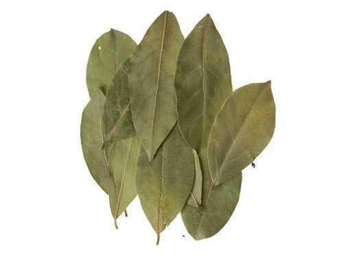 Bay Leaves price Virudhunagar Sattur