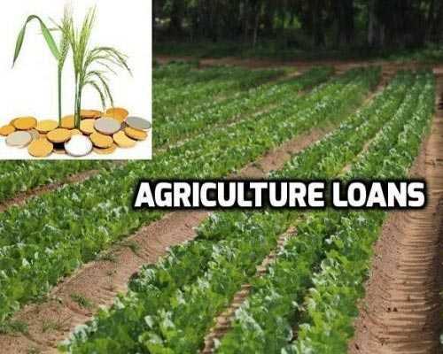 Agri loan consultancy palani