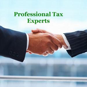 Theni District Tax Consultants