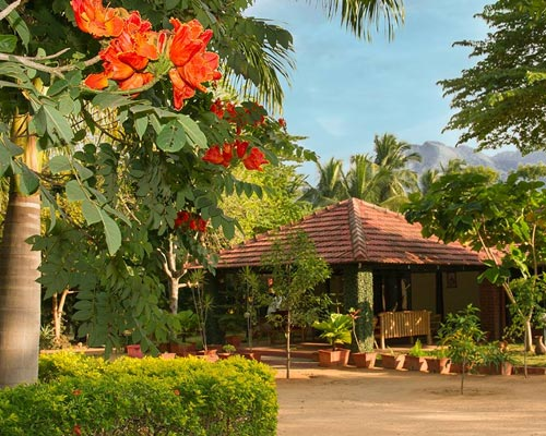 Farm House Sales Kerala Meghamalai Munnar