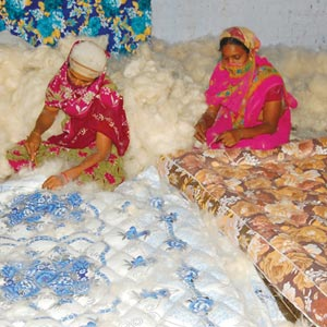 Theni District Silk Cotton