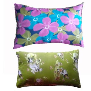 Organic & Natural Kapok Pillows