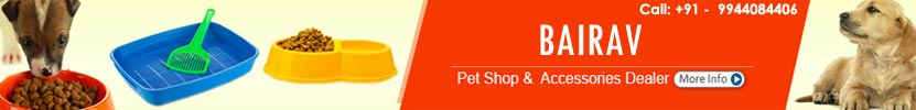 Theni-Dog-Care-Theni