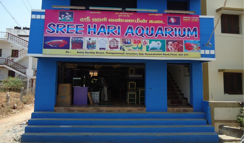 Residential aquarium maker theni